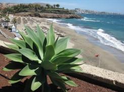 canarische eilanden tenerife strandvakantie 123