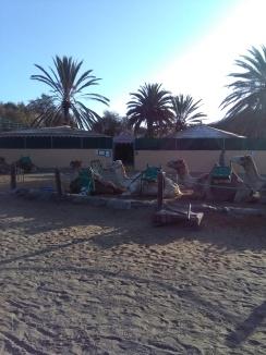 maspalomas gran canaria duinen strandvakantie spanje zee 1 kamelen