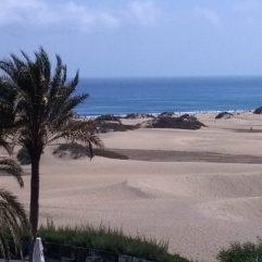 cropped-maspalomas-gran-canaria-duinen-strandvakantie-spanje-zee-201.jpg