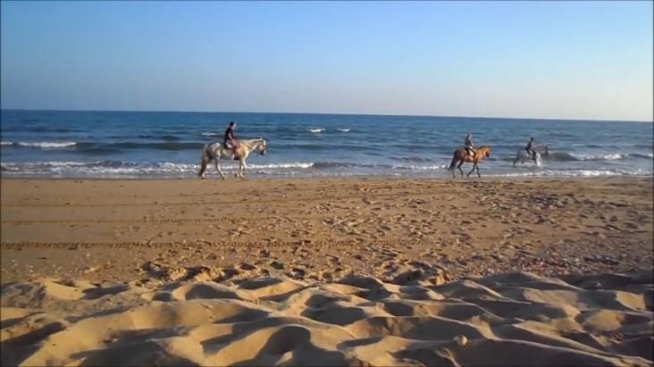 Isla-Cristina mooi strand vakantie spanje 003