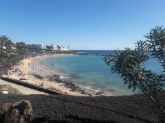 Playa Flamingo - lanzarote