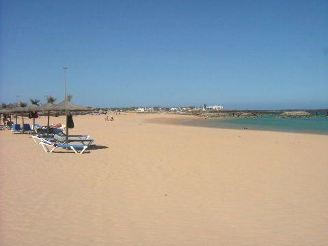 caleta de fuste beach fuerteventura