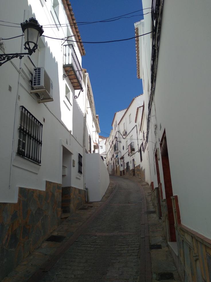 casares-is-een-mooi-dorpje-in-de-bergen-niet-ver-van-estepona-straten-1