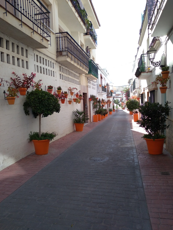 leuke-straatjes-en-pleintjes-in-estepona-met-veel-bloemen-vakantie-costa-del-sol-21-1