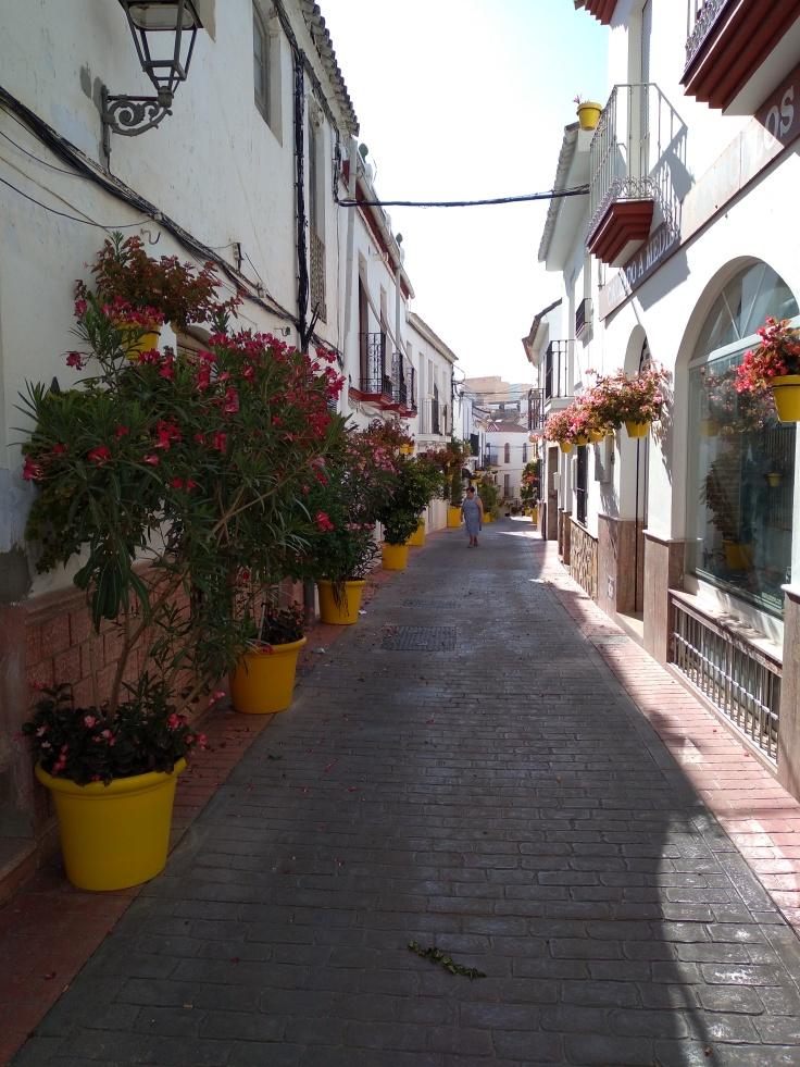 leuke-straatjes-en-pleintjes-in-estepona-met-veel-bloemen-vakantie-costa-del-sol-6yh-1