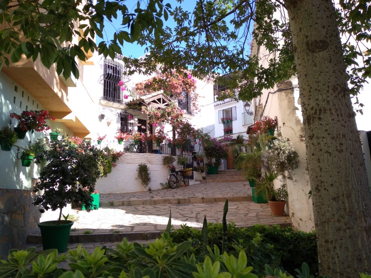 leuke-straatjes-en-pleintjes-in-estepona-met-veel-bloemen-vakantie-costa-del-sol-7-1
