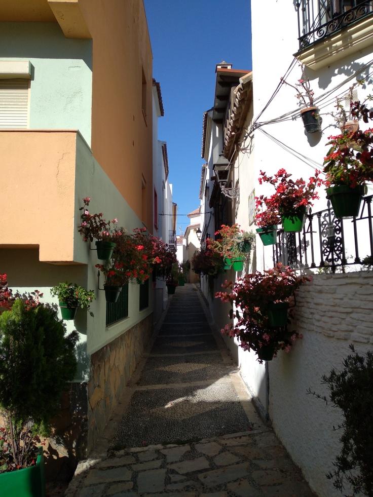 leuke-straatjes-en-pleintjes-in-estepona-met-veel-bloemen-vakantie-costa-del-sol-88-1