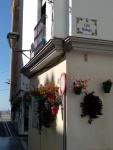 leuke-straatjes-in-estepona-met-veel-bloemen-vakantie-costa-del-sol-3-1